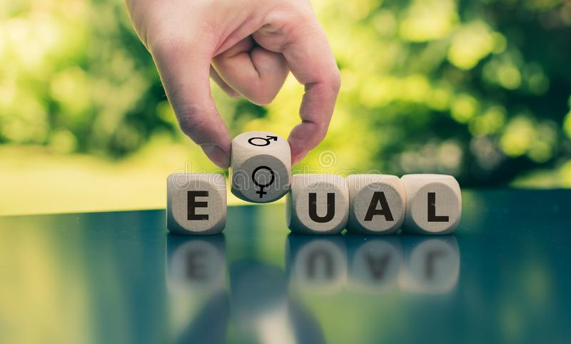 Symbol dla równych dóbr Sześciany tworzą słowo «równy « obrazy royalty free