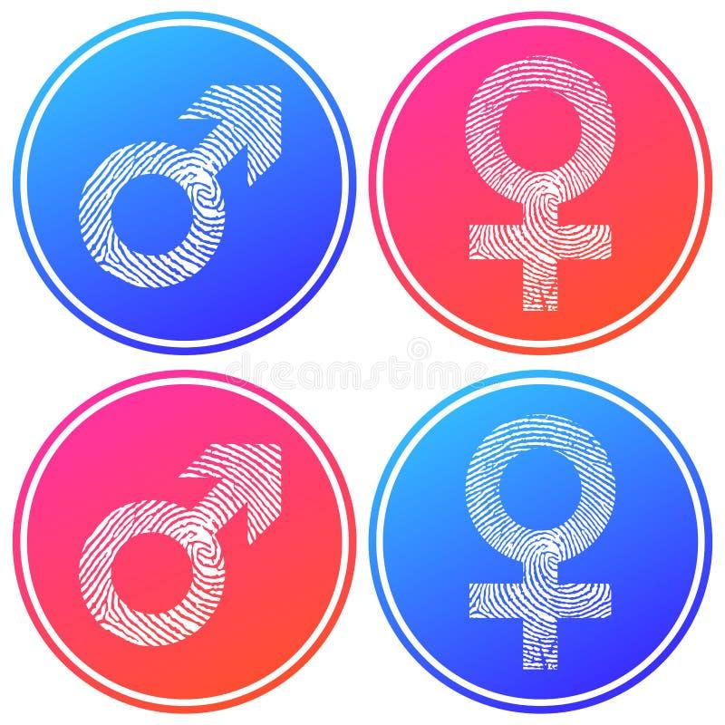 Symbol för cirkulär för kontur för kvinnligt och manligt symbolfingeravtryck vit Blå och rosa lutningfärgdesign royaltyfri illustrationer