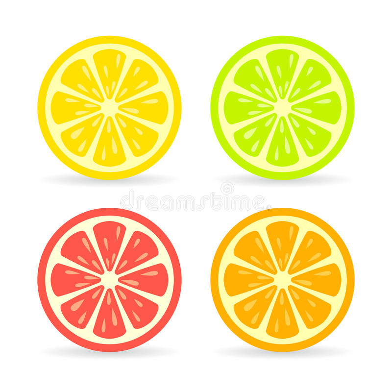 Symbol för citrusfruktskivavektor vektor illustrationer
