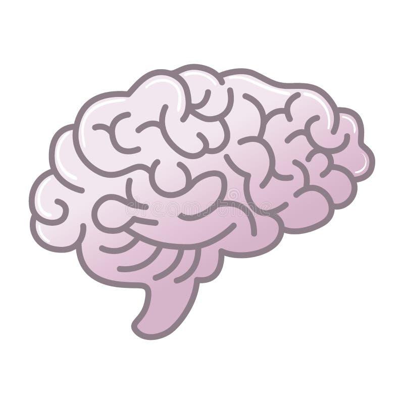 Symbol för mänsklig hjärna, symbol av intellekt, studie, lära och utbildning vektor illustrationer