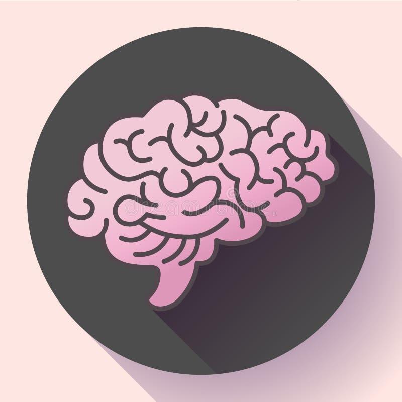 Symbol för mänsklig hjärna, symbol av intellekt, studie, lära och utbildning royaltyfri illustrationer
