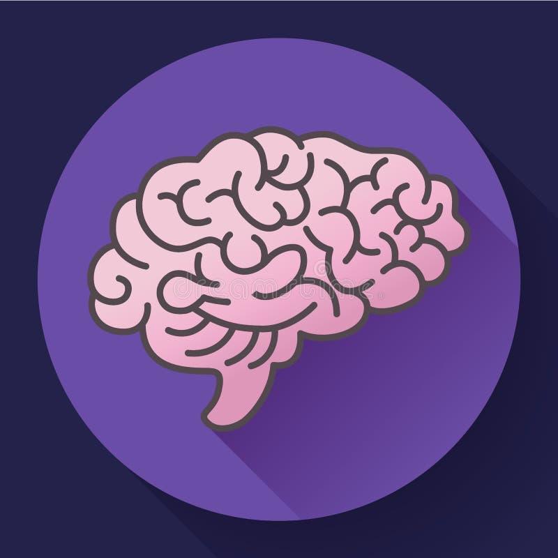 Symbol för mänsklig hjärna, symbol av intellekt, studie, lära och utbildning stock illustrationer