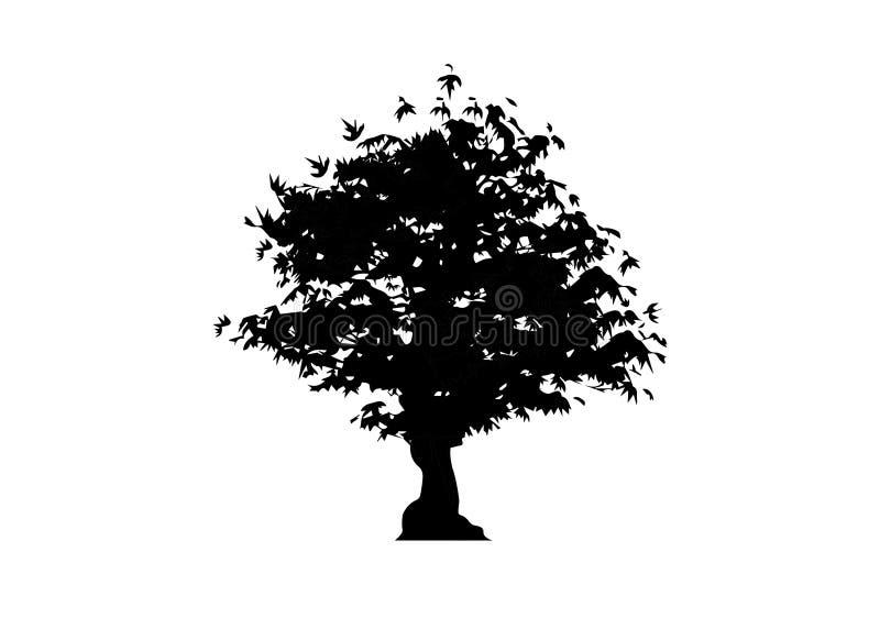 Symbol för träd för vektorkonturlönn som isoleras på vit bakgrund Acer Palmatum, Deshojo, för växtbonsai för japansk lönn symbol  stock illustrationer