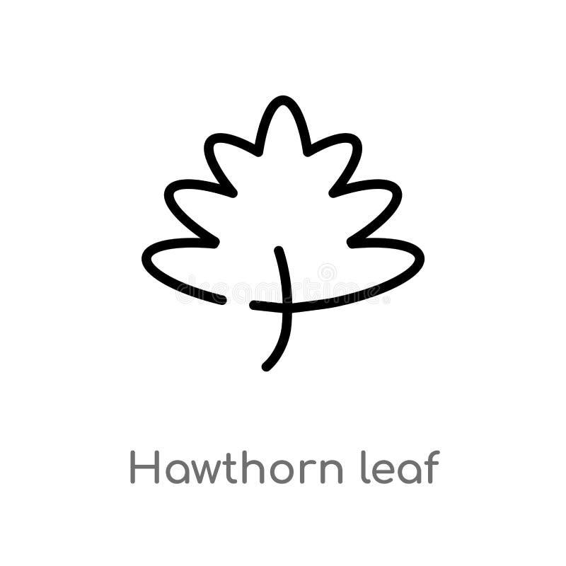 symbol för vektor för översiktshagtornblad isolerad svart enkel linje beståndsdelillustration från naturbegrepp Redigerbar vektor royaltyfri illustrationer