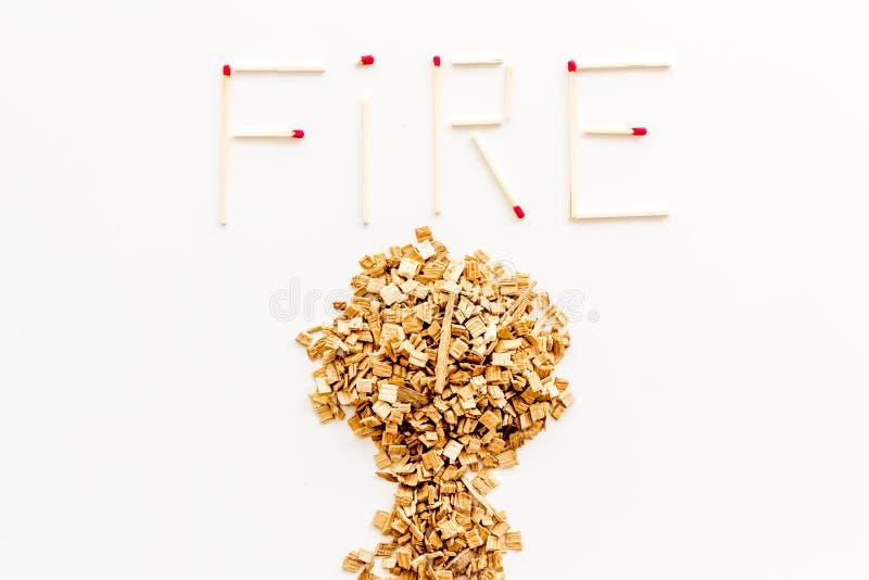 Symbol für Feuer in Wäldern mit Baum aus Entflammung und Wortfeuer aus Streichhölzern auf weißer Hintergrundansicht stockbilder