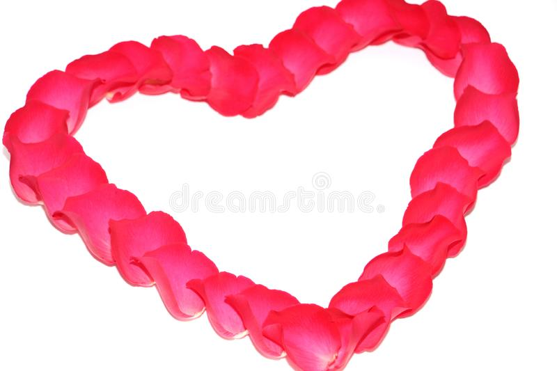 The symbol of love is laid out of roses in the shape of a heart. Red heart of rose petals. The symbol of love is laid out of roses in the shape of a heart stock photos