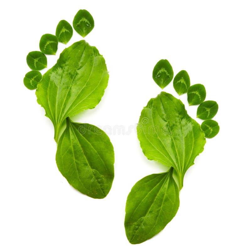 Symbole d'écologie de source photo stock