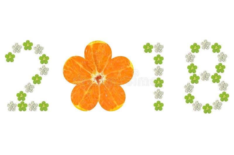 Symbole 2018 d'année de fruit formé par fleur illustration stock