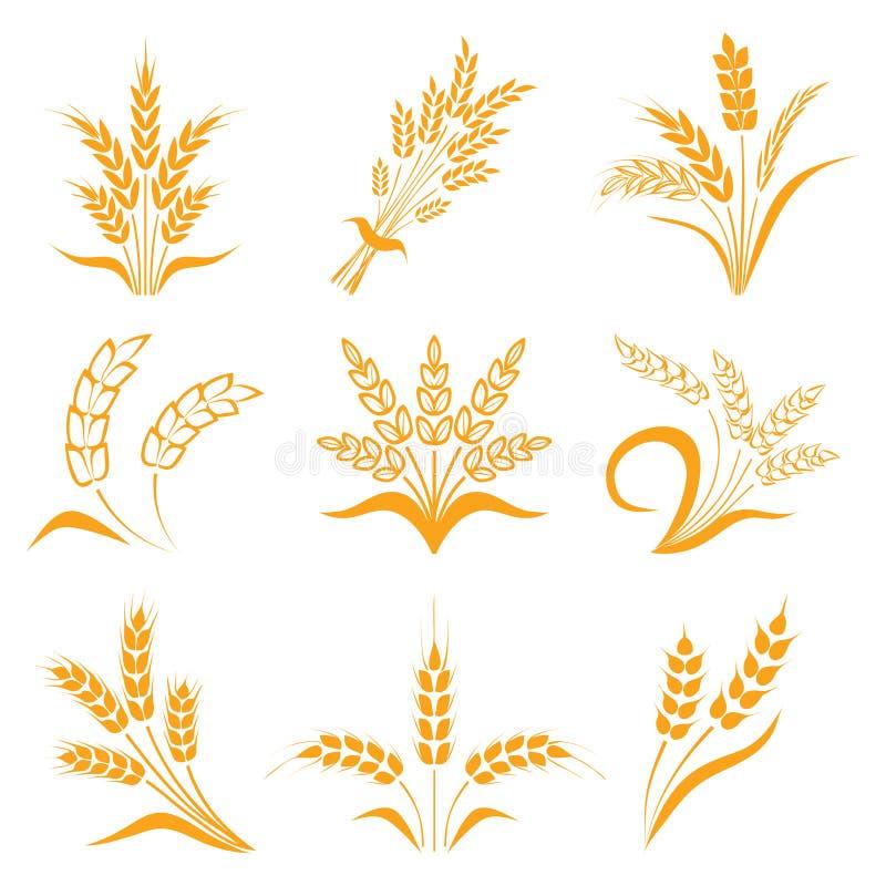 symbole dla loga projekta banatki Rolnictwo, kukurudza, jęczmień, badyle, organicznie rośliny, chleb, jedzenie, naturalny żniwo,  royalty ilustracja
