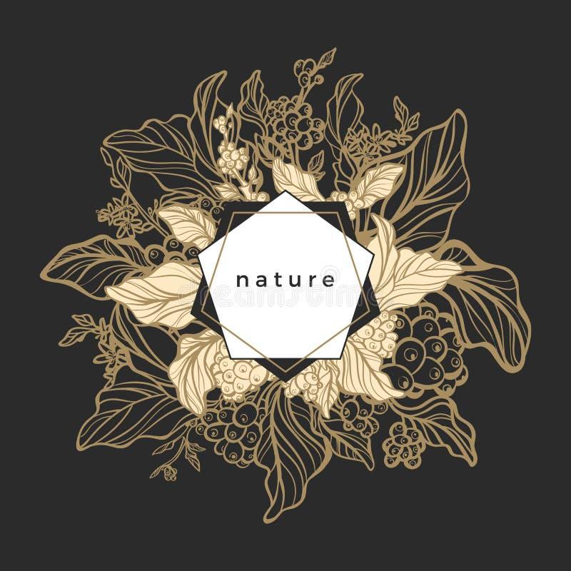 Symbole floral royal de vecteur Branche de café illustration stock