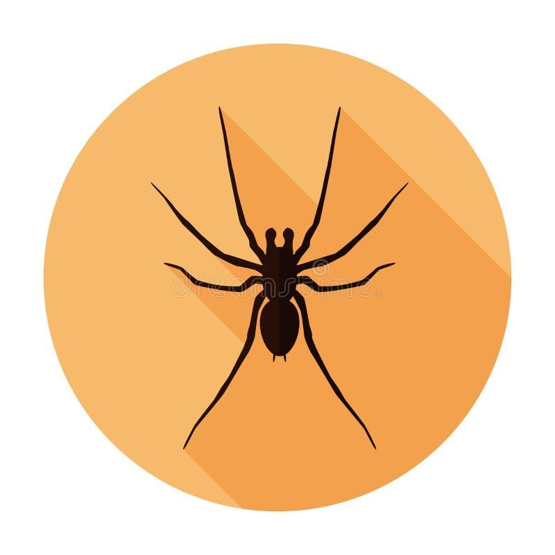 Symbole plat de signe d'insecte d'icône d'araignée, autocollant photos libres de droits