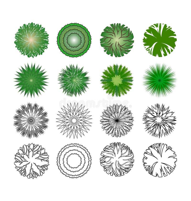 Symbole von Bäumen lizenzfreie abbildung