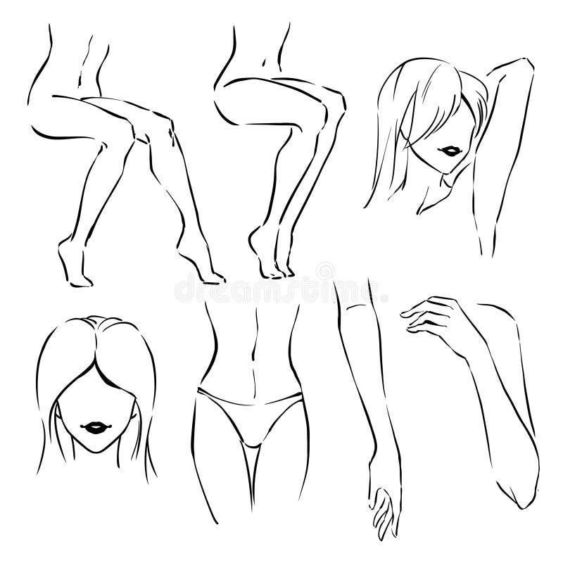 Symbolen ställde in av zoner för hårdepilation: ben armhåla, mustasch, armar, bikini stock illustrationer