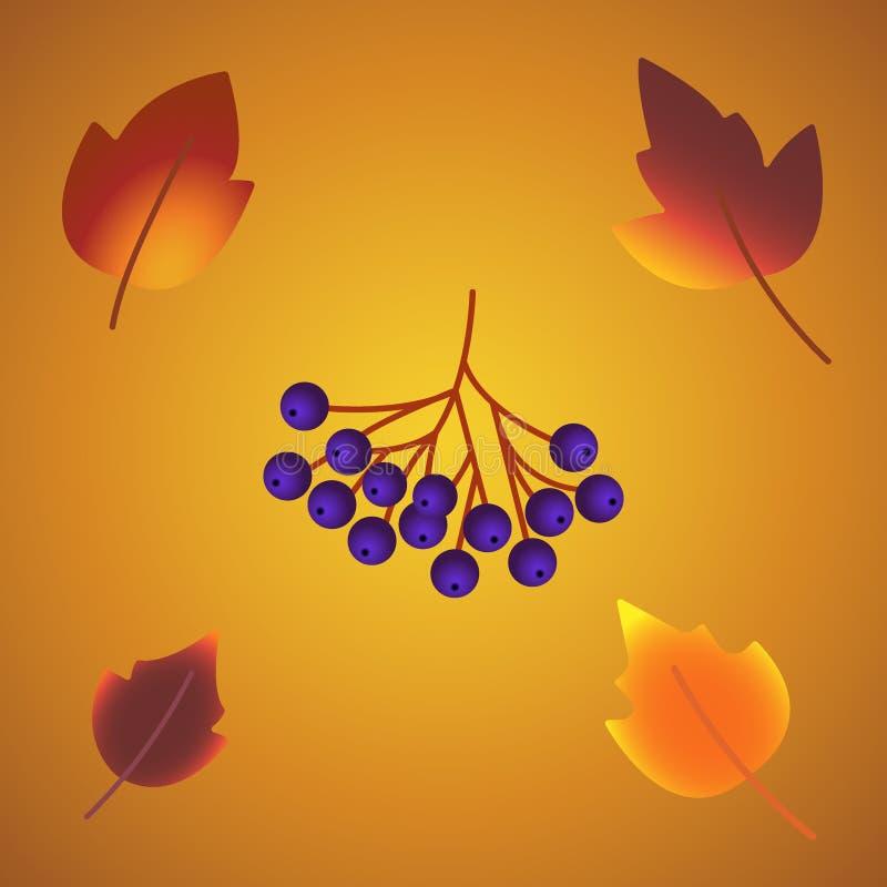 Symboler för höstbladlövverk av ekekollonen, lönn eller alm och rönn med bäret och champinjonen Vektor isolerade beståndsdelar fö royaltyfri illustrationer