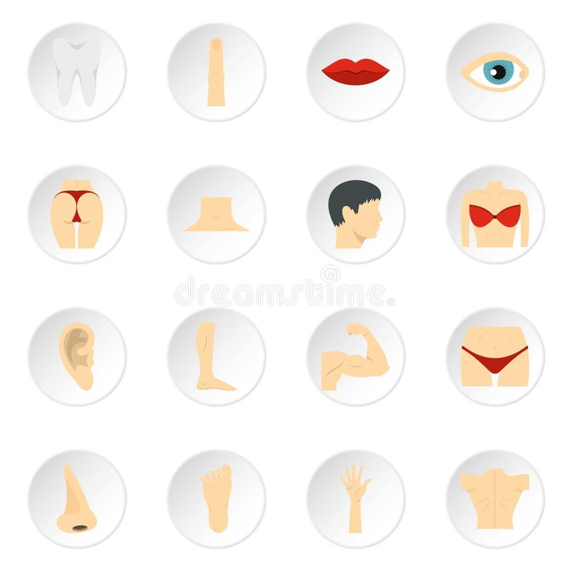 Symboler för kroppsdeluppsättninglägenhet stock illustrationer
