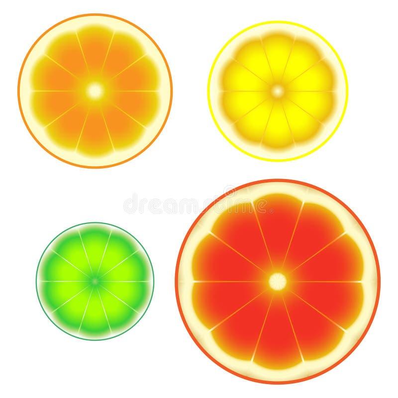 Symboles découpés en tranches mûrs frais d'agrumes illustration stock