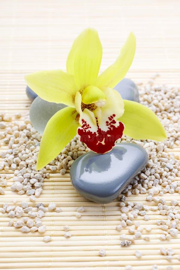 Symboles de station thermale : pierres de zen et fleur d'orchidée images stock