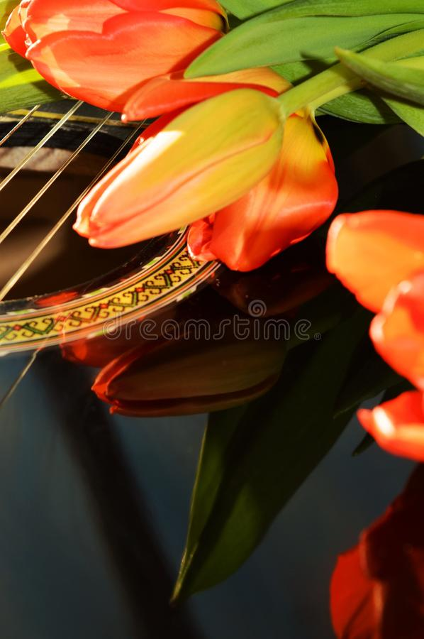 Symbols of tenderness royalty free stock images