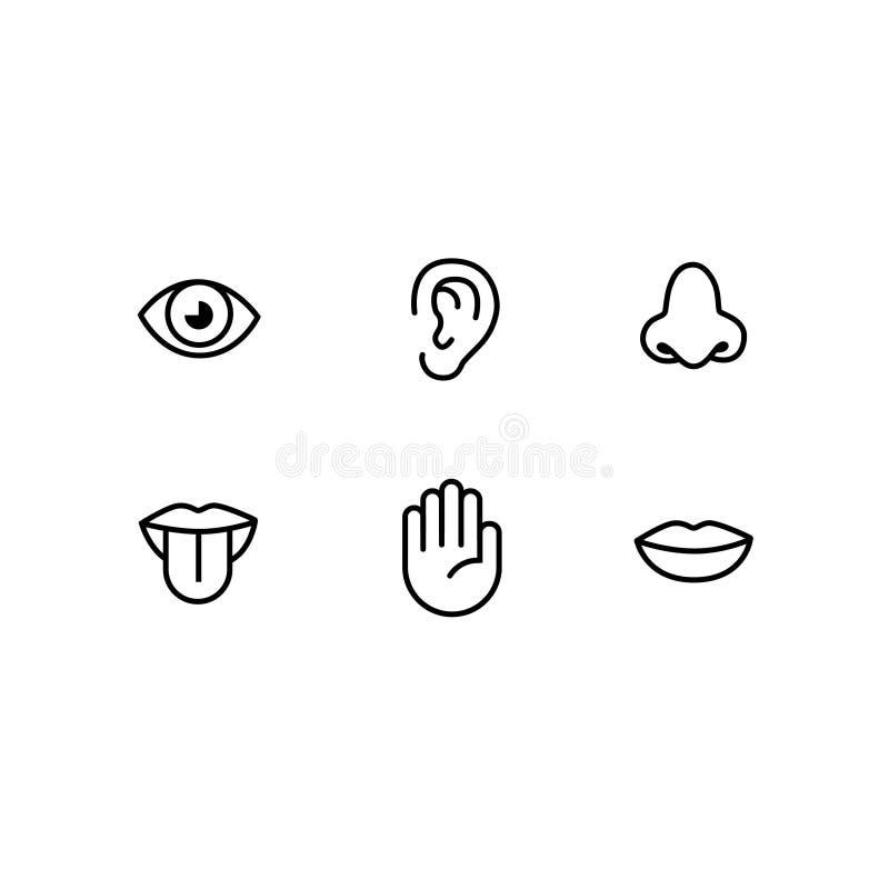 Symbolsuppsättning av sex mänskliga avkänningar stock illustrationer