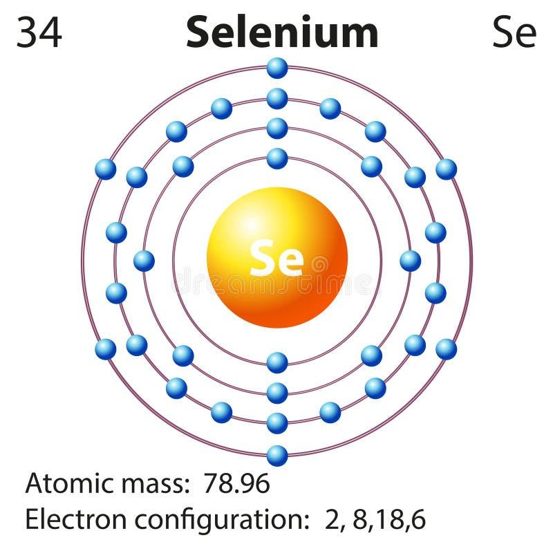 Symbolu i elektronu diagram dla selenu ilustracja wektor