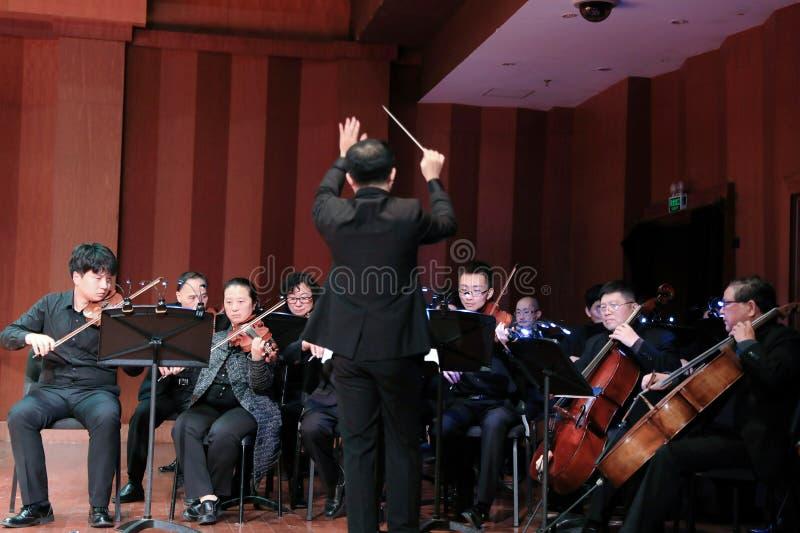 Symfoniorkester arkivfoton