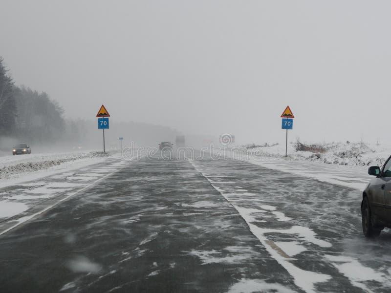 Symmetri: vägmärken under snöstorm royaltyfria foton