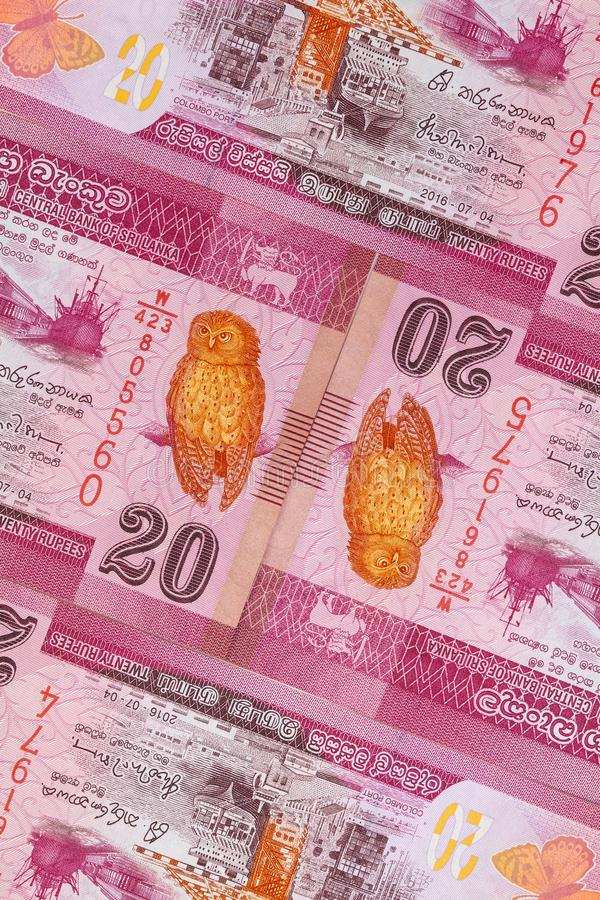 The symmetrical composition of Sri Lankan banknotes. Rupee, the national currency of Sri Lanka stock photography