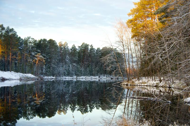 Symmetrical reflection in water Autumn snowy forest. Altai royalty free stock photography