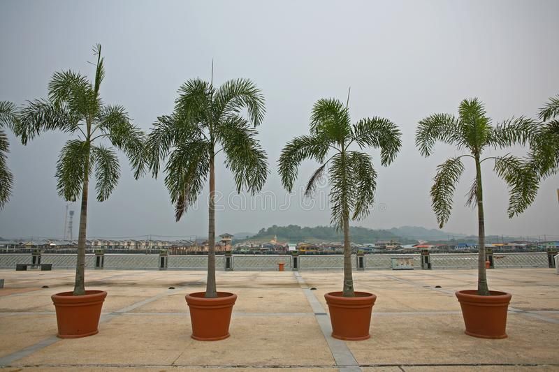Palm trees line the Brunei Riverside in the CBD of the secretive country royalty free stock photo