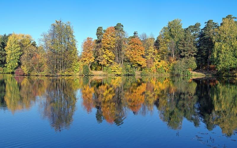 Symmetrische Landschaft mit den Bäumen, die in einem See im Herbst sich reflektieren stockfotos