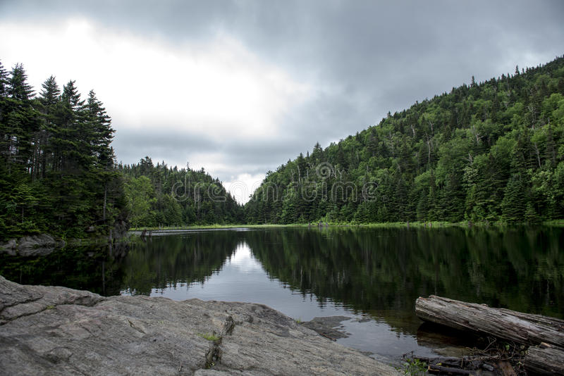 Symmetry. Summer reflections under a pale grey sky royalty free stock photography