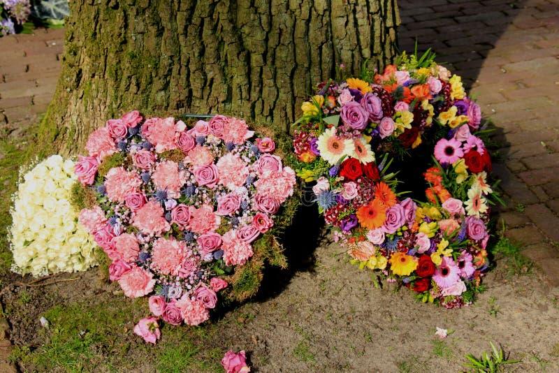 Download Sympathieblumen Nahe Einem Baum Stockfoto - Bild von pink, geformt: 90232416