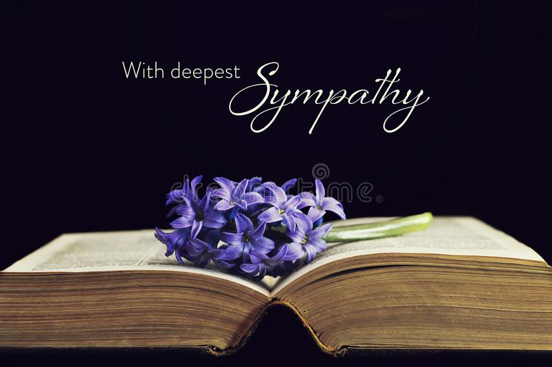 Sympathy card with flower and open book. Sympathy card with flower and old open book stock photography