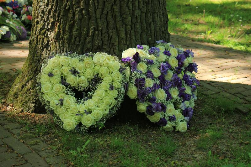 Sympathy flowers near a tree. Heart shaped sympathy flowers  in white and purple blue stock photography