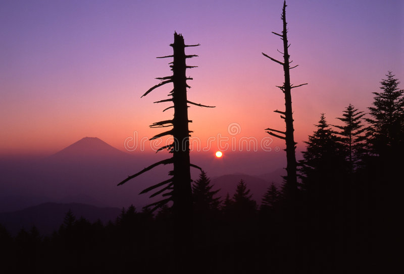 Symphony at Dawn royalty free stock photography