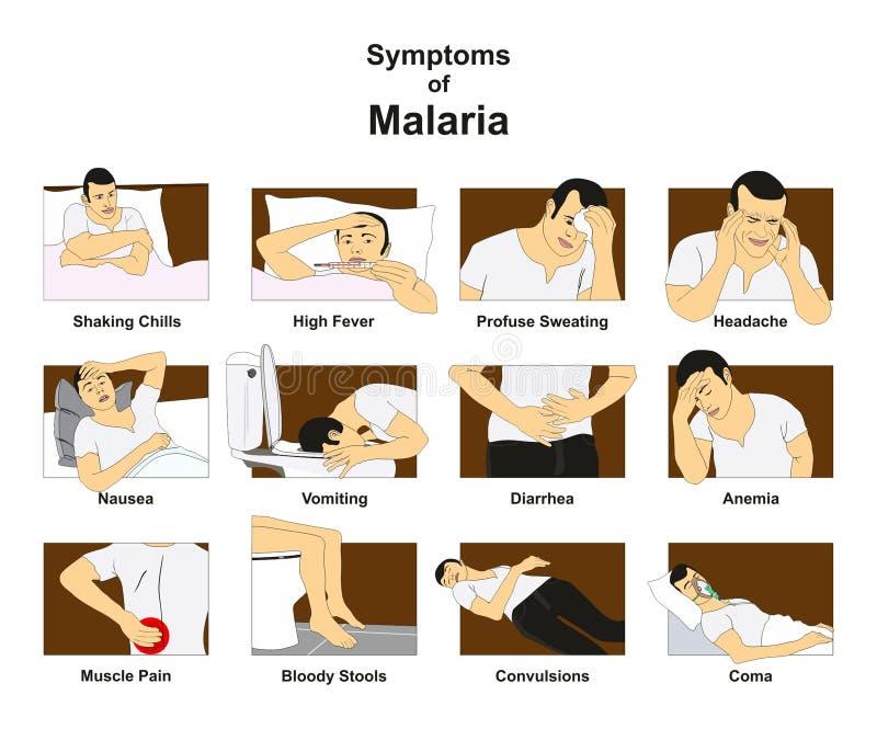 Symptomen van malaria royalty-vrije illustratie