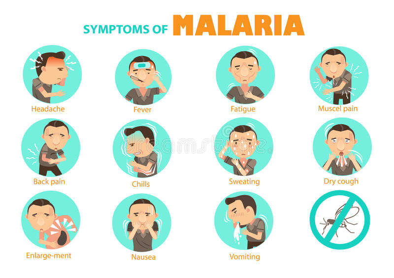 Symptoms malaria. Man malaria symptoms Info Graphics in the circle.Vector illustrations vector illustration