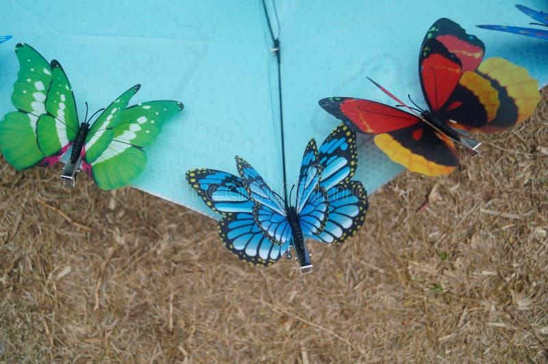 Symulacja motyl zdjęcie stock