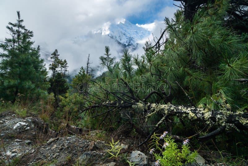 syn på annapurna himalaya i grumlig dag under regnperioden arkivfoton