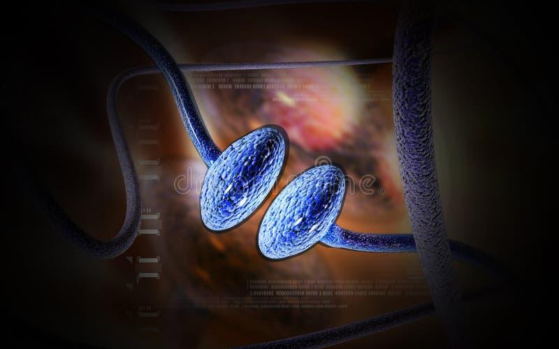 synaps stock afbeeldingen