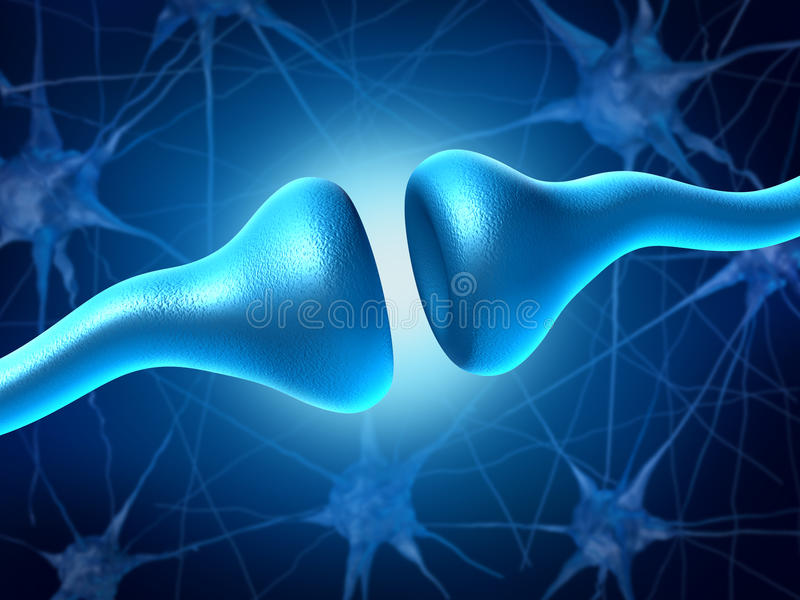 Synapse et neurones illustration stock