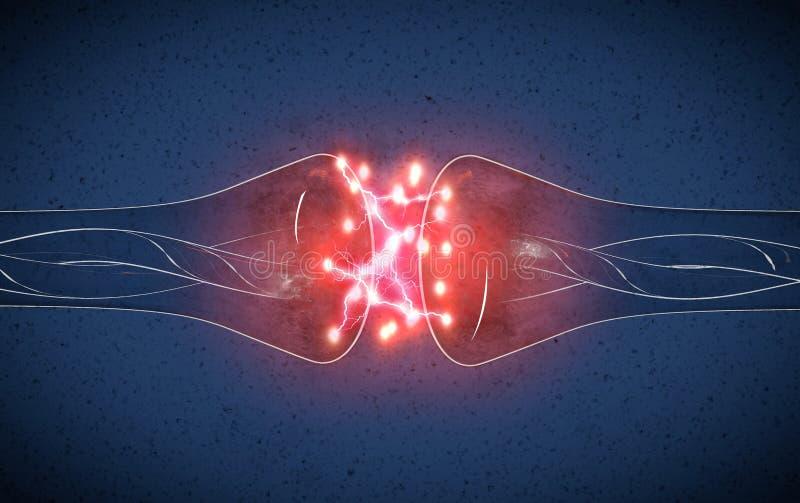 Synapse jest strukturą który pozwala neuronu, nerwu komórkę przechodzić sygnał lub lub elektrycznego, chemicznego ilustracja wektor