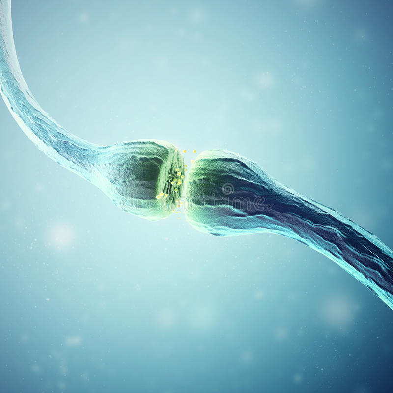 Synapse- och Neuronceller som överför elektriska kemiska signaler framförande 3d vektor illustrationer