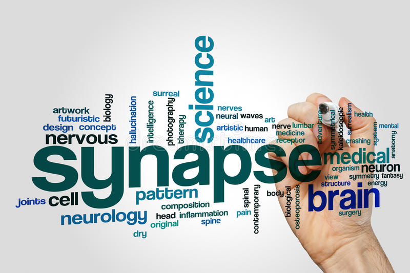 Synapse word cloud. Concept on grey background stock photo