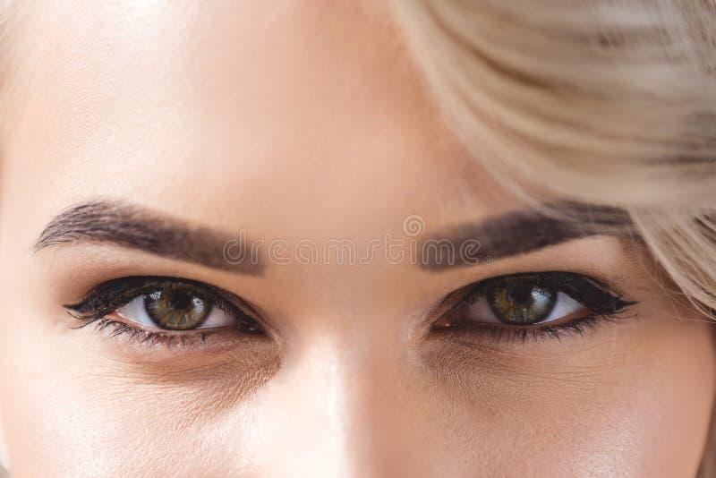 synar den övre sikten för slutet av den härliga kvinnlign med att se för makeup royaltyfri foto