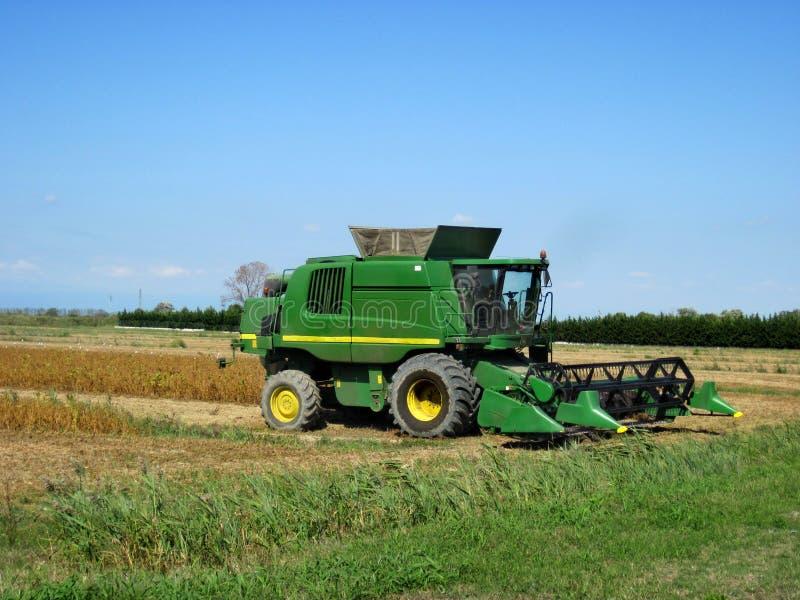 Syndykat zbiera upraw kukurydzanych zbożowych pola zdjęcie royalty free