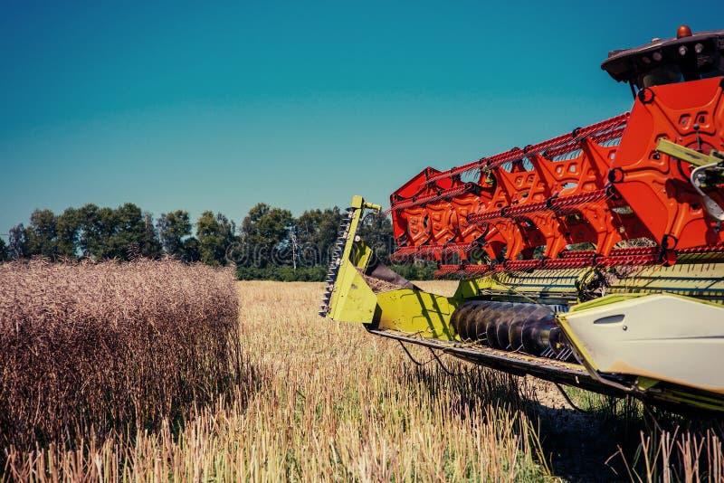 Syndykata żniwiarz na pszenicznym polu Rolnictwo zdjęcia stock