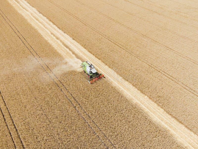 Syndykata ?niwiarz Pracuje w The Field Rolnictwo maszynowa zbiera banatka Widok z lotu ptaka od above zdjęcia stock