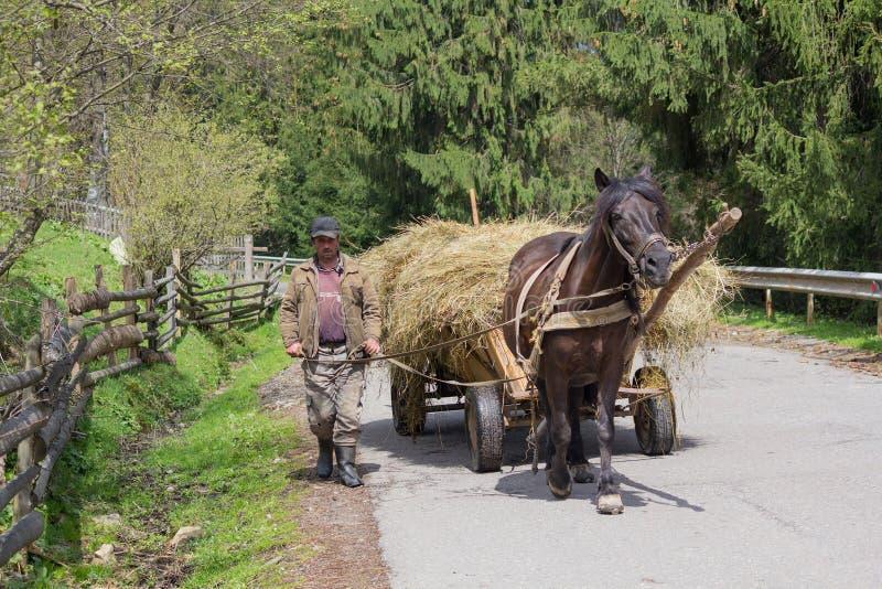 Synevyrska Polyana, Ukraina - April 21, 2016: Bonden leder en hästdragen vagn royaltyfria foton
