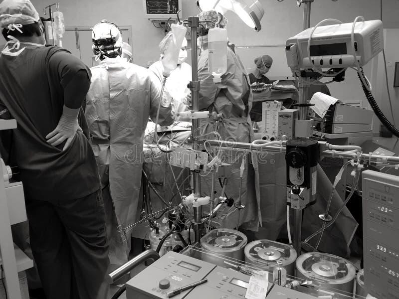 Synligt hjärtan, händer av hjärt- kirurger med hjälpmedel royaltyfri foto